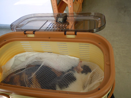 20120825hospital01_chyoko.JPG