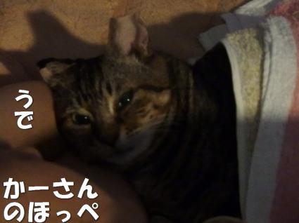 20130618home_jiiji.jpg