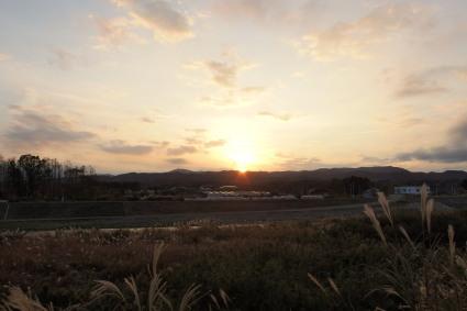 20131109fukushima17.jpg