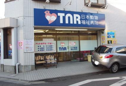 20140119kawasaki12.jpg