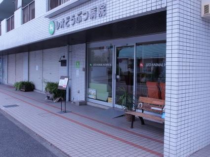 20140621shiro01.jpg