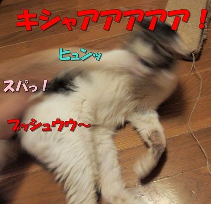 20180511mizu041.jpg